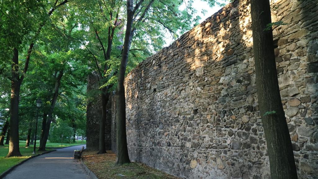 Mury obronne 2.jpeg